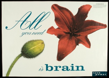 Poster of All you need is brain